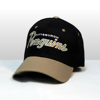 Pittsburgh Penguin Hat