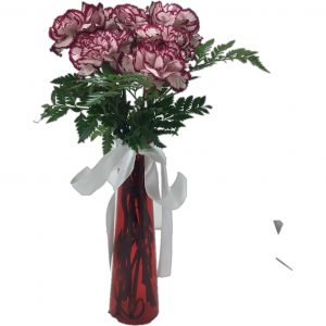 Six beautiful red tipped carnations for your loved one on Valentine's Day!