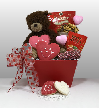 Teddy Bear gifts for valentines' day gifts in Pittsburgh