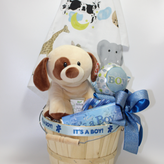 The best new baby gifts in Pittsburgh. Baby Boy gifts. Baby Girl gifts. The most creative gift baskets for new parents and babies in Pittsburgh. Local delivery available.